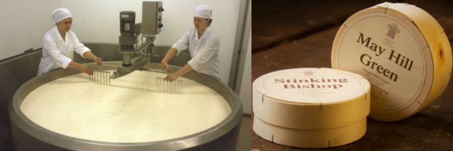 Cheesemaking-Cheeses
